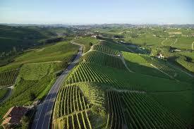 Il vino Gavi in tutto il mondo con la comunicazione firmata Amapola