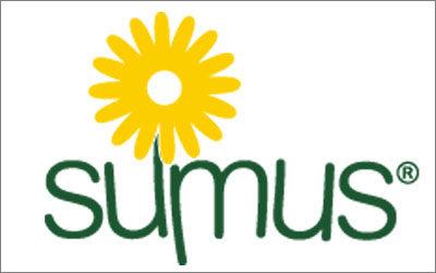 Amapola cura i testi del nuovo sito di Sumus Italia